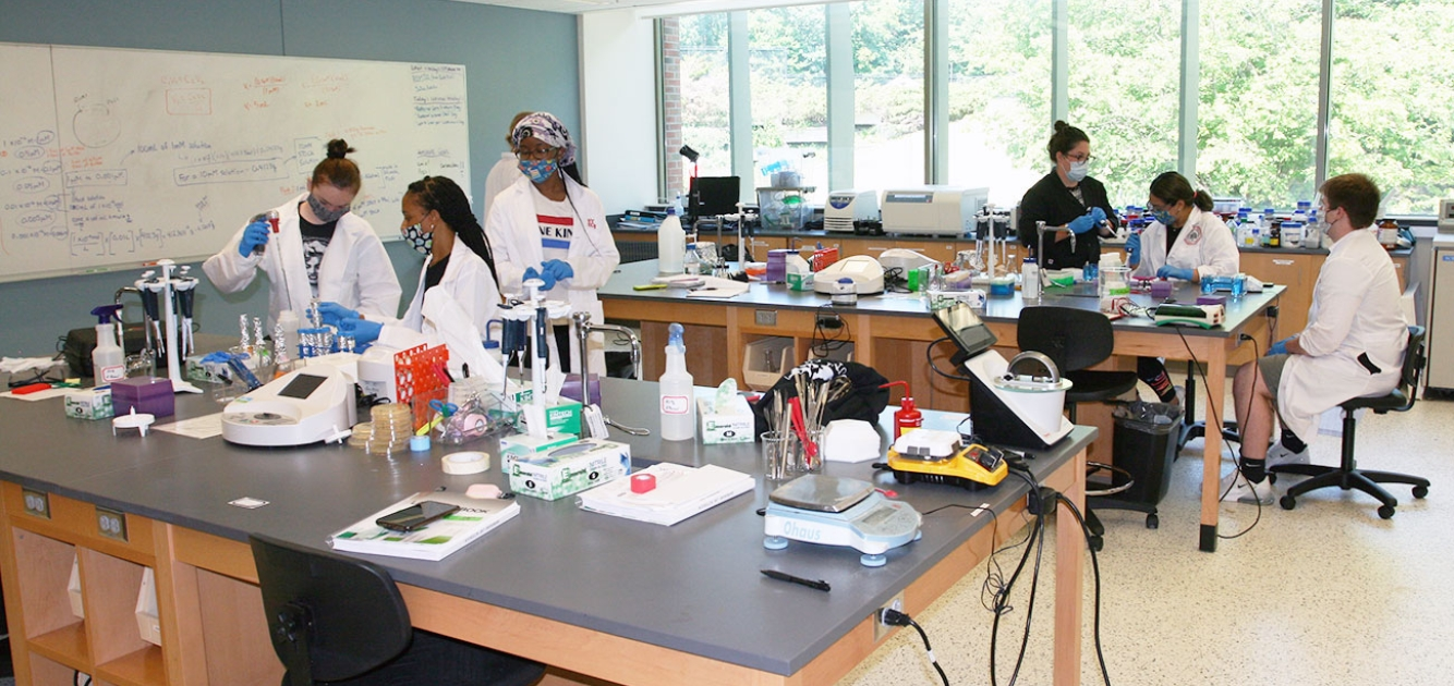 Students Get Hands-On With Summer Research
