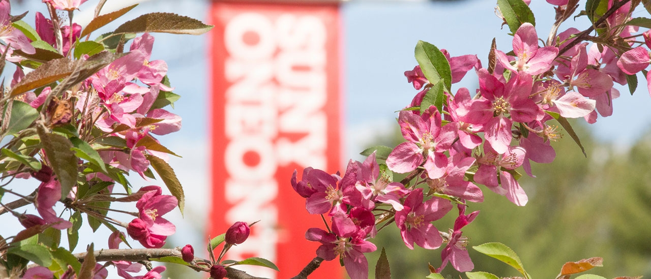 SUNY Oneonta banner surrounded by flowers