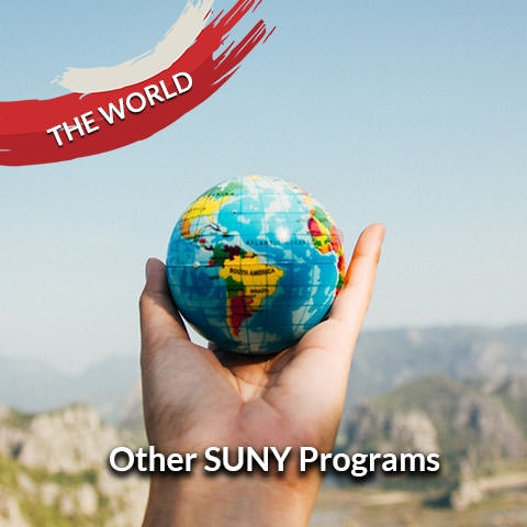 Other SUNY Programs