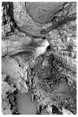 Figure 4: An example of an upper-level passage in Mammoth Cave, with remnants of sediment fill on the floor and left-hand wall. The posts and trail are remnants of a former tourist trail. Because the caves are totally dark, cave photos were taken with the aid of flash guns.