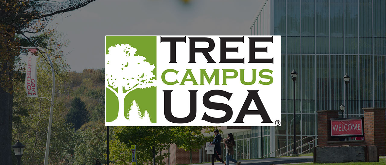 Sustainability Tree Campus USA
