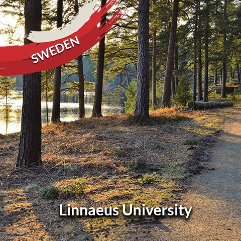 Sweden: Linnaeus University